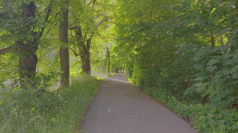 Dammweg zwischen der Elster und dem Mühlgraben